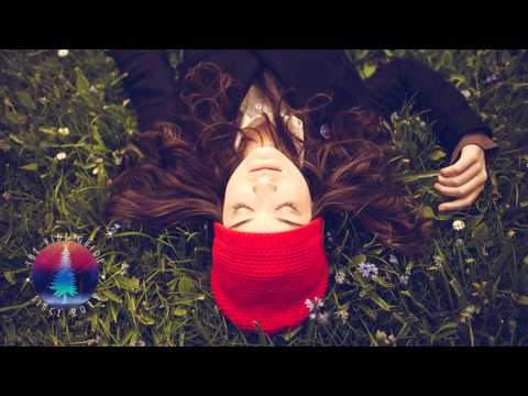 First Aid Kit – Wolf (MATZINGHA Edit)